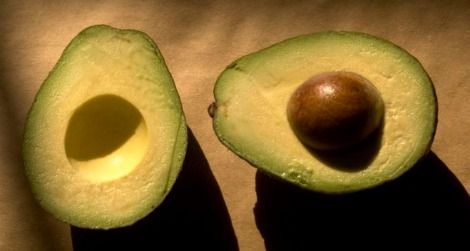 Why the Avocado Should Have Gone the Way of the Dodo