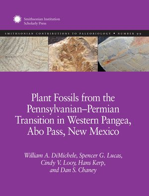 Plant Fossils from the Pennsylvanian–Permian Transition in Western Pangea, Abo Pass, New Mexico photo