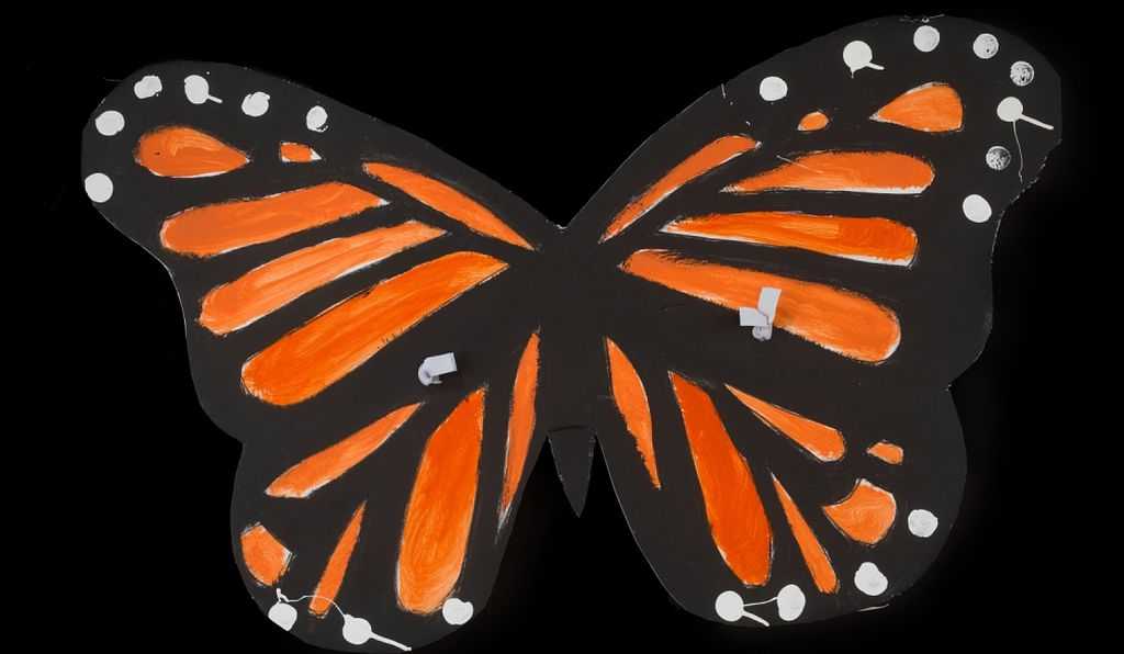 "One object already collected is a pair of painted monarch butterfly wings made of poster board material, that was worn by ""a young DACA recipient from Nebraska who came to demonstrate in Washington, D.C. on March 5, 2018."