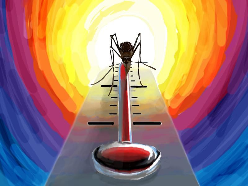 mosquito temperature illustration