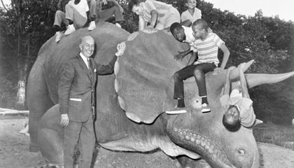 An Old Favorite Returns to the National Zoo