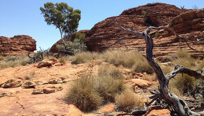 People Braved Australia's Western Desert Roughly 45,000 Years Ago