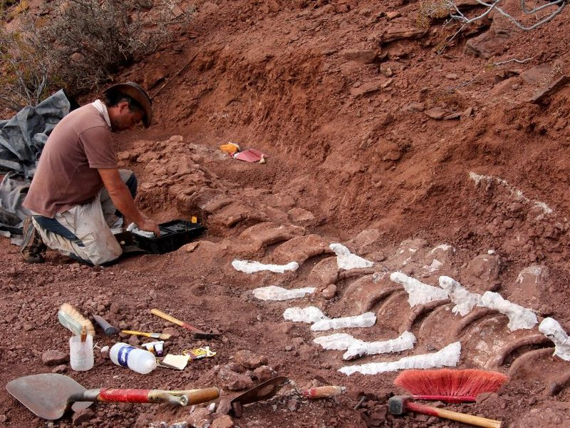 Paleontologist digging in Candeleros Formation in the Neuquen River Valley, Argentina