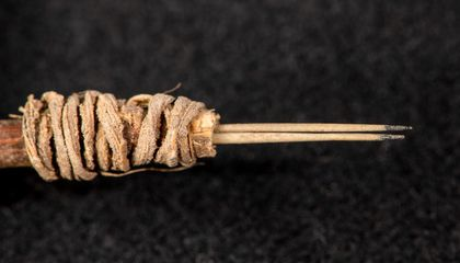 These 2,000-Year-Old Needles, Still Sharp, Are the Oldest Tattooing Instruments Found in the Southwestern U.S.