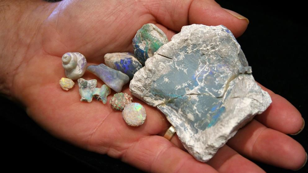 Opal Fossils in Hand