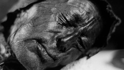 What Did Tollund Man, One of Europe's Famed Bog Bodies, Eat Before He Died?