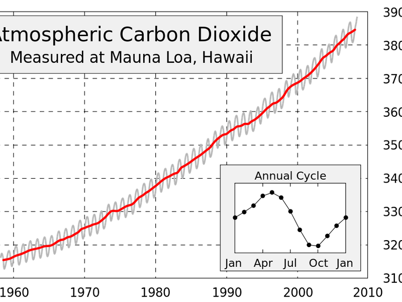This figure shows the history of atmospheric carbon dioxide concentrations as directly measured at Mauna Loa, Hawaii.