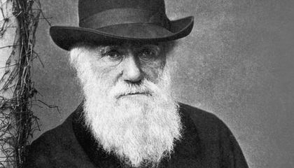 What Darwin Didn t Know Science