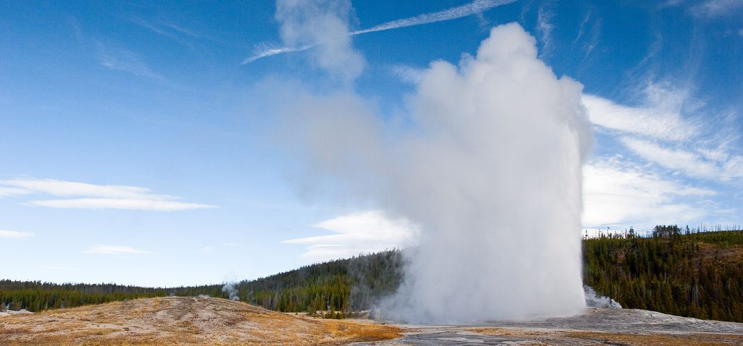 One of many Yellowstone geysers