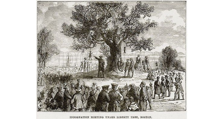 Effigy Trees 20th Anniversary >> The Story Behind A Forgotten Symbol Of The American Revolution The
