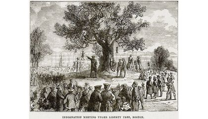 The Story Behind a Forgotten Symbol of the American Revolution: The Liberty Tree