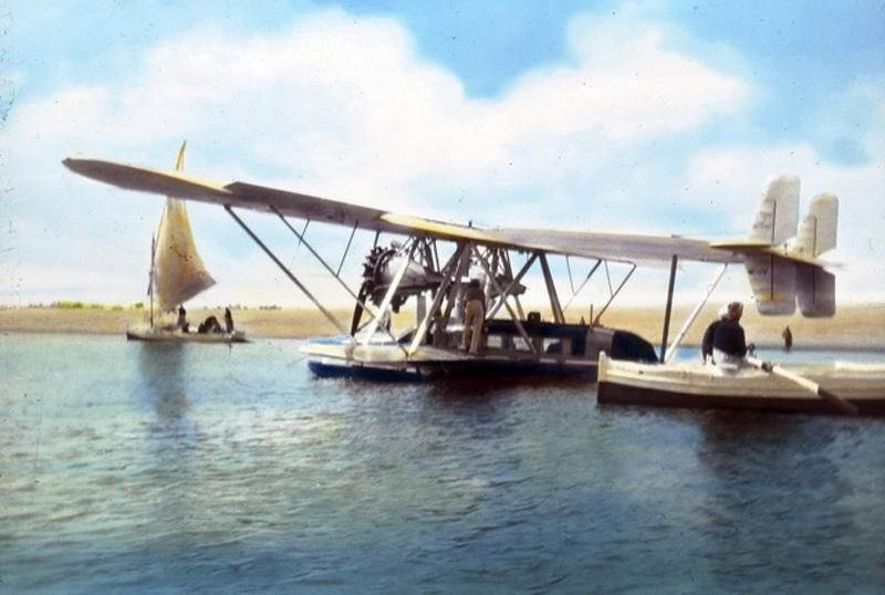 Silver Wings on the Nile.jpg