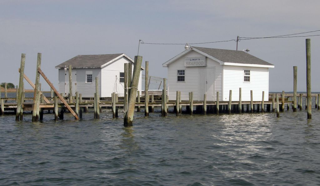 On Tangier Island, little houses perched on piers stretch out in the water and all around us.