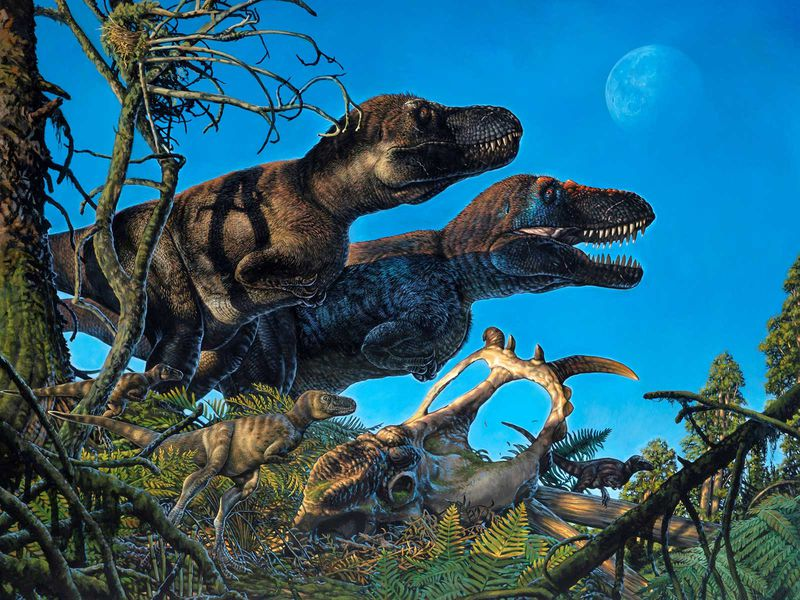Tyrannosaur And Young