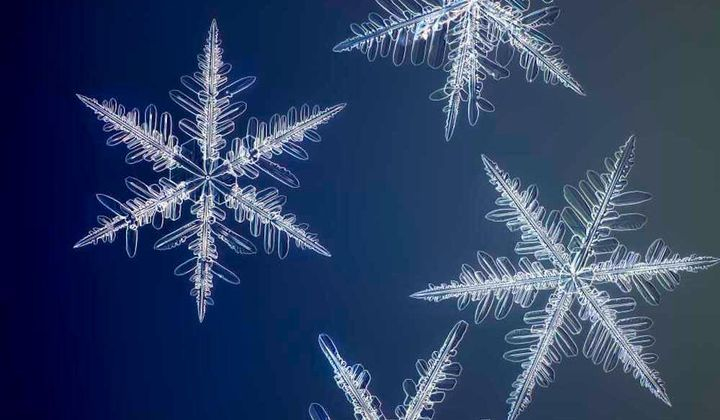 See Snowflakes in High Resolution