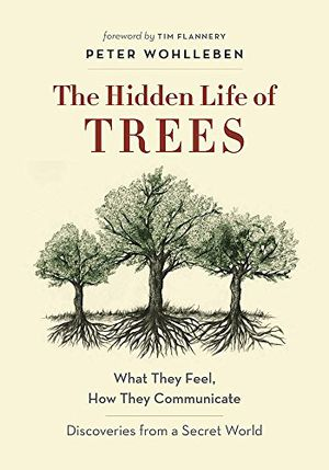 Preview thumbnail for 'The Hidden Life of Trees: What They Feel, How They Communicate―Discoveries from a Secret World