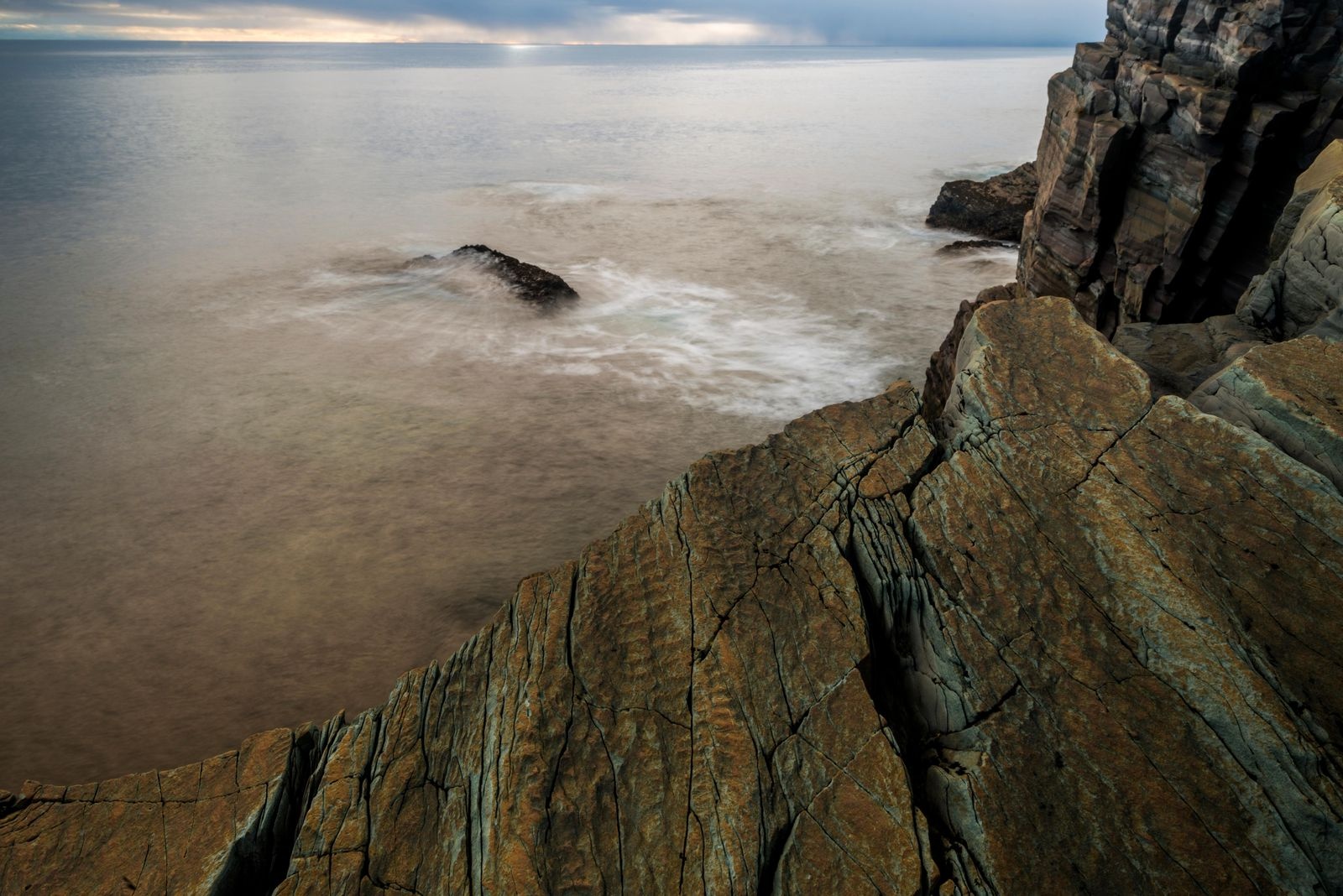 Darwin Would Have Loved the Cliffs of Newfoundland, Where