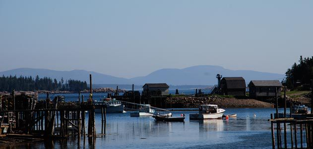 Lunt Harbor