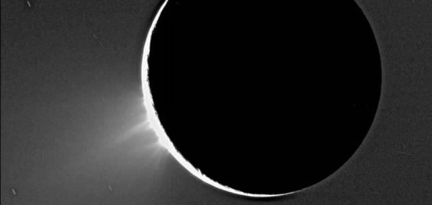 The fountains of Enceladus as seen by Cassini