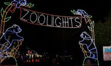 Photos: ZooLights Return for the Holidays
