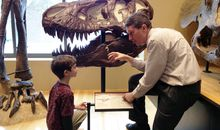 Beneski Museum of Natural History at Amherst College