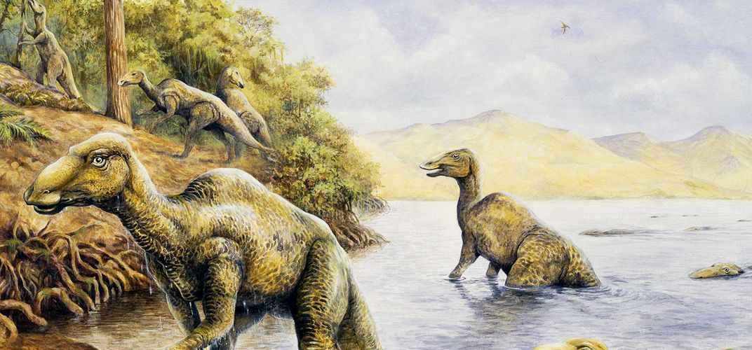 Caption: An Ode to the World's Most Average Dinosaurs