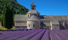 Walks and Cuisine of Provence