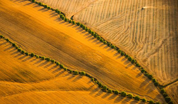 A tractor plows fields at sunset in Andalucia.