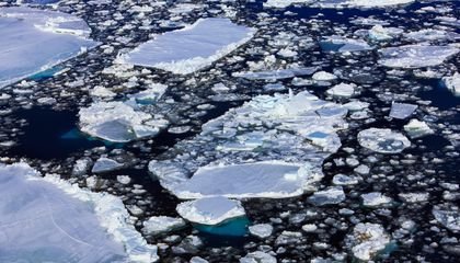 Why Is Antarctic Sea Ice at a 35-Year High?