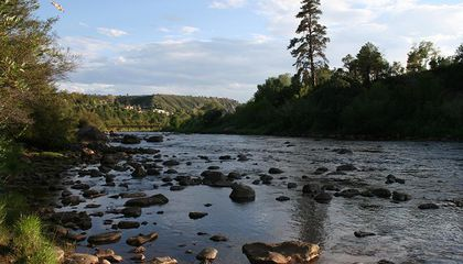 What's Next for the Animas River?