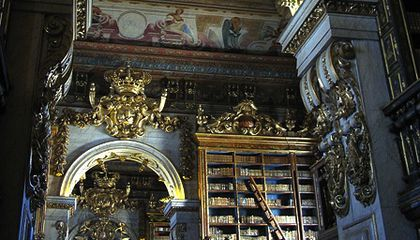 Bats Act As Pest Control at Two Old Portuguese Libraries