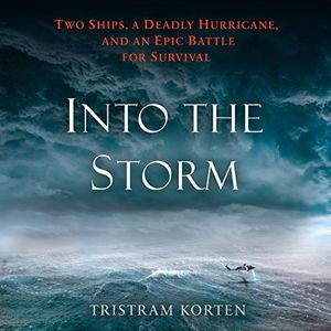 Preview thumbnail for 'Into the Storm: Two Ships, a Deadly Hurricane, and an Epic Battle for Survival