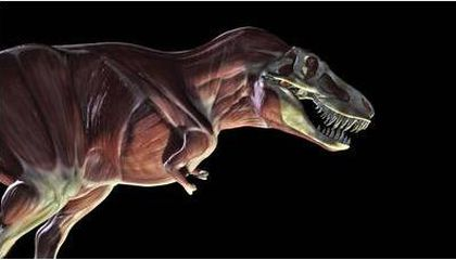 Discovery Channel Dinosaurs Bite Back
