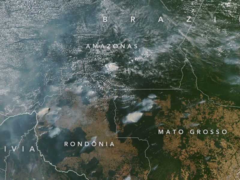 Fires in Amazon in 2019
