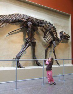 20110520083127hadrosaur-skeleton-child-234x300.jpg