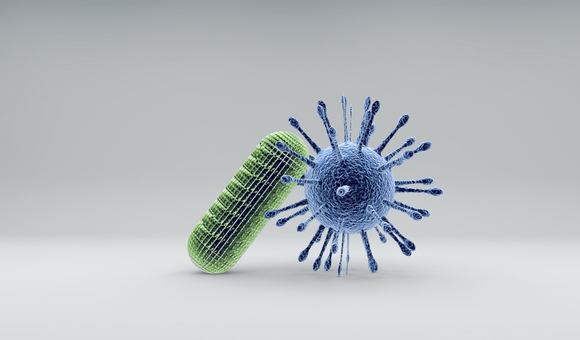 Preview thumbnail for video'Ask Smithsonian: What's the Difference Between Bacteria and Viruses?
