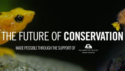 Future of Conservation