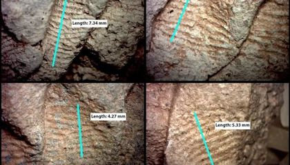 Ancient Fingerprints Show Men and Women Both Made Pottery in the American Southwest