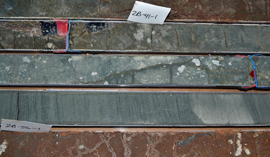 Gray, roundish nodules of carbonate dot these sediment cores drilled from northern Wyoming.