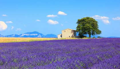 provence-stay