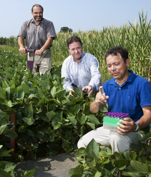 Researchers at the USDA's expansive Beltsville Agricultural Research Center