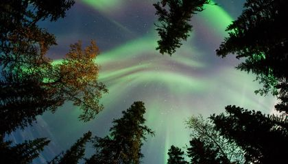 Powerful Solar Flare Paints the Sky With Candy-Colored Auroras