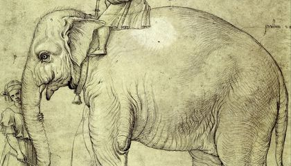 There's an Elephant Buried Underneath the Vatican