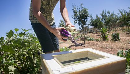 Could This Cooler Help Combat Global Hunger?