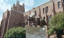 Yale Peabody Museum of Natural History