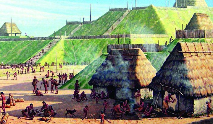 Human Poop Could Help Study Ancient Populations
