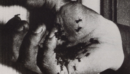 Salvador Dali Suffered From the Irrational Fear That Insects Were Crawling All Over His Skin