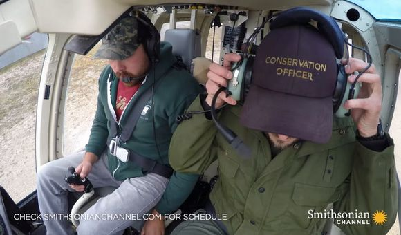 Preview thumbnail for video'A polar bear is released back into the wild via helicopter