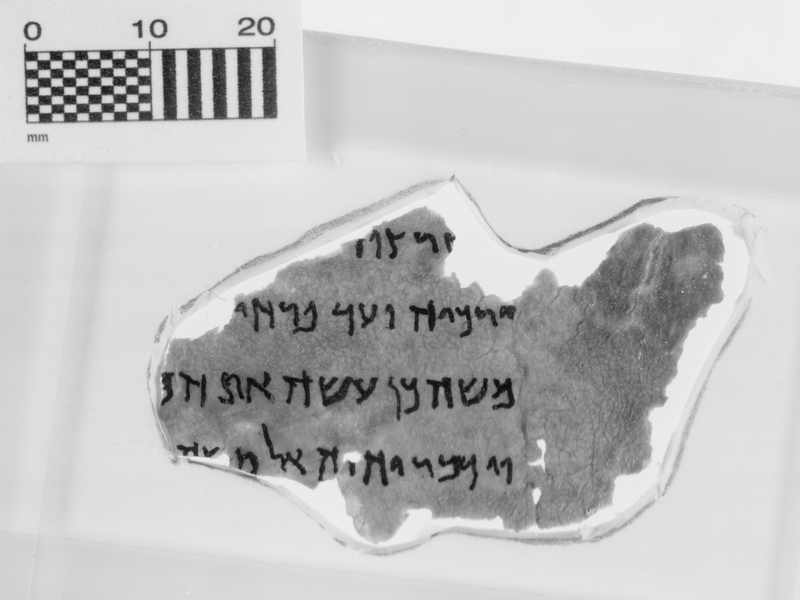 Museum of the Bible Acknowledges Five of Its Dead Sea