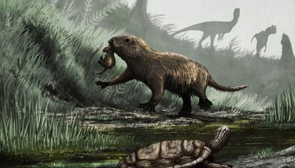 When the Dinos Went Away, Mammals Came Out (in Daylight) to Play
